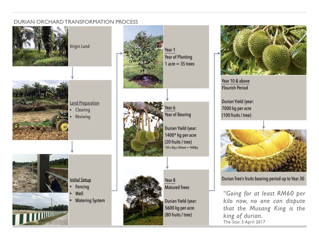 durian investment - buyer.005